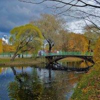 В плену осеннего очарования... :: Sergey Gordoff