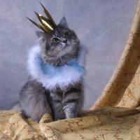 Но о том, что принцессой была, я хочу, чтобы я не забыла! :: Ирина Приходько