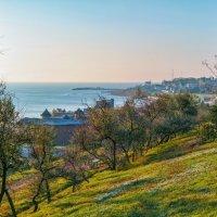 Солнечное воскресенье в ноябре. :: Вахтанг Хантадзе