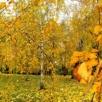Октябрь. :: Владимир Драгунский