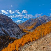 Осень на Окинском перевале :: Анатолий Иргл