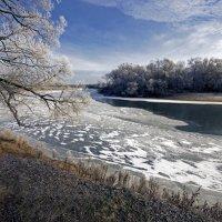 С видом на тот берег Десны :: Дубовцев Евгений