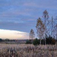 Осеннее утро :: Юрий Шувалов