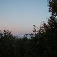 Mėnulio šviesa / Moon light :: silvestras gaiziunas gaiziunas