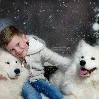 белое счастье... :: Светлана Мизик