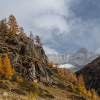 Октябрь в Альпах. :: Светлана Риццо
