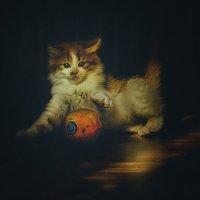 Маленький игрун :: Александр Бойко