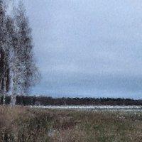 ... И редкий солнца луч, и первые морозы, и отдаленные седой зимы угрозы. :: Арина Невская