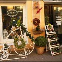 Цветочный магазин к Новому году готов :: Galina Belugina
