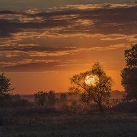 Оранжевое небо-оранжевое соннце-оранжевый закат :: Лариса Березуцкая
