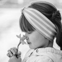 Запах весны :: Татьяна Сазонова