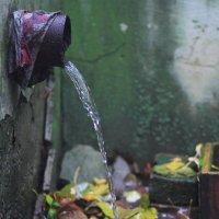 Осень. Дождь. :: Юрий Гайворонский