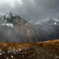 В горах Домбая :: Сергей