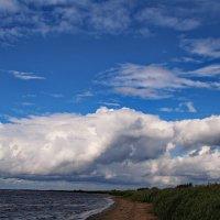 Побережье Латвии :: Татьянка *