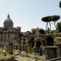 Развалины Римского Форума :: Елена Павлова (Смолова)