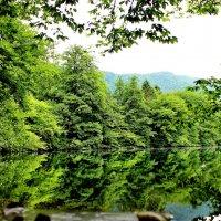 Голубое озеро :: Ольга Зубова