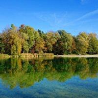 """""""...Зеркальная гладь тихих  озер. Магический лес, листьев желтый узор..."""" :: Galina Dzubina"""