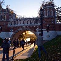 Фигурный мост с аркой. :: Галина R...
