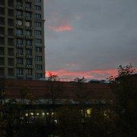 закат в Воронеже :: Виктория Бурова