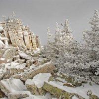 Ноябрь в горах :: Галина Ильясова