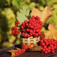 Краски октября :: Татьянка *