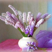 Розовые цветы. :: nadyasilyuk Вознюк