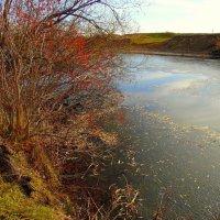 А у реки,а у реки.... :: nadyasilyuk Вознюк