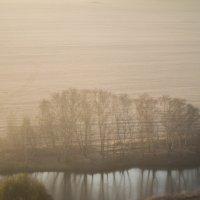 Немного туманного утра :: Юля Грек