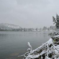 И падал снег... :: Сергей Герасимов