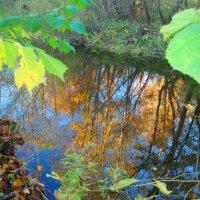 Lėvens ruduo / Autumn at river Lėvuo :: silvestras gaiziunas
