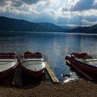 У озера :: Alex Molodetsky