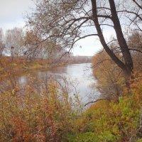 Осень в танце кружилась легко под янтарным дождем листопада... :: Елена Ярова