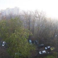 Москва в тумане :: Игорь Герман