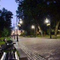Ночной парк :: Любовь