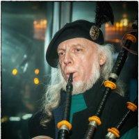 Шотландец :: Leo Alex Photographer