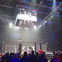 Все  взоры обращены  к  рингу! :: Виталий Селиванов