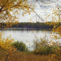 Пахнет осенью...Что-то необыкновенно грустное, приветливое и красивое...(А.Чехов) :: Елена Ярова