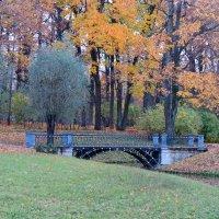 Осень, октябрь :: Светлана