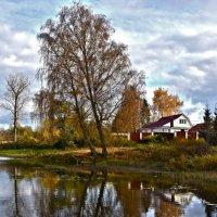 На реке Вяз. :: Oleg S