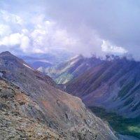 горы Алтая :: Елена Кордумова