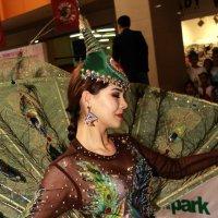 Пава :: astanafoto kazakhstan