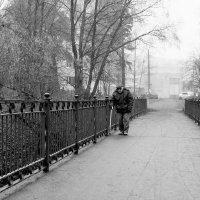 Прогулка :: Виталий