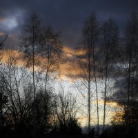 Облако на закате :: Николай Алексеев