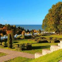 Осень в парке Тойла-Ору :: Marina Pavlova