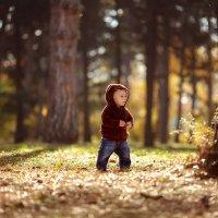 Мишка косолапый по лесу идет... :: Irina Kodentseva