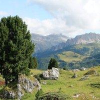 ...и горы хребтами... :: Olga