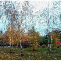 Осенний парк :: Sergii VIdov