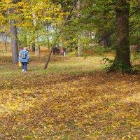 Осень а парке Ривьера. Сочи :: Tata Wolf
