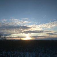 Зимний закат :: Светлана Козлова
