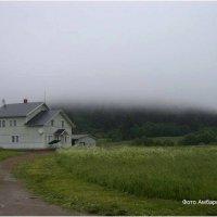 Туман после ливня :: Андрей